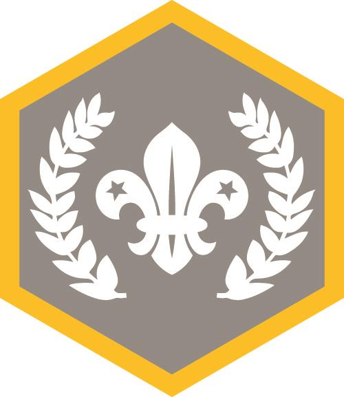 Chief Scouts Silver Award